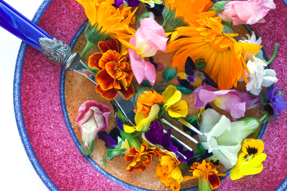 42 съедобных цветка