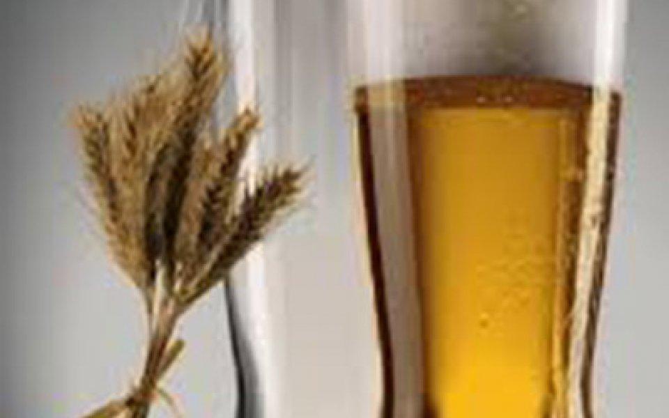 Μπύρα Lager