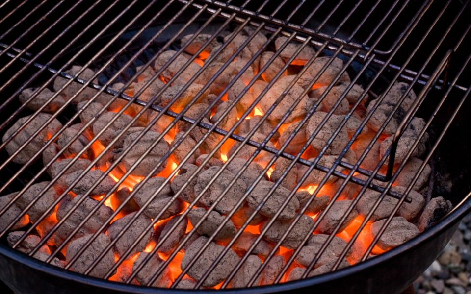 Barbeque: What is the best coal for cooking on the barbeque?