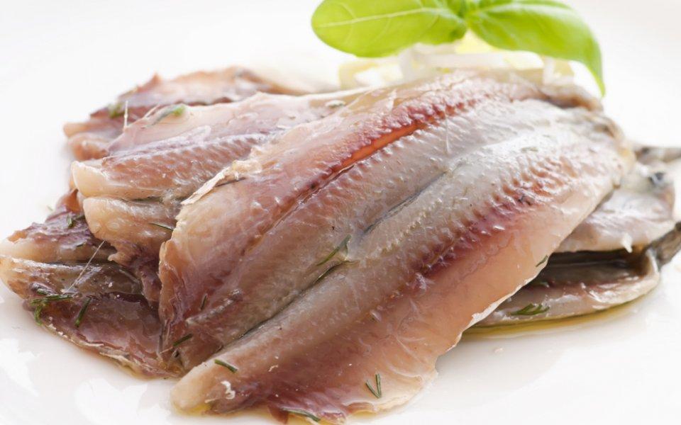 Αντζούγια: Από ποιο ψάρι προέρχεται;