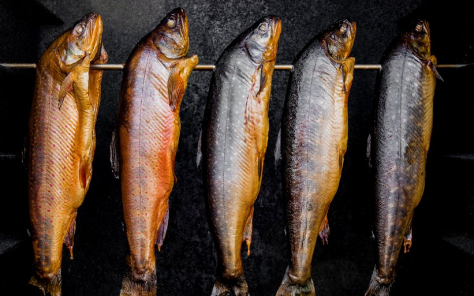 Smoked salmon and smoked trout: The best way to enjoy their flavor