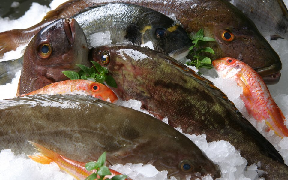 Φρέσκα ψάρια: Κριτήρια επιλογής